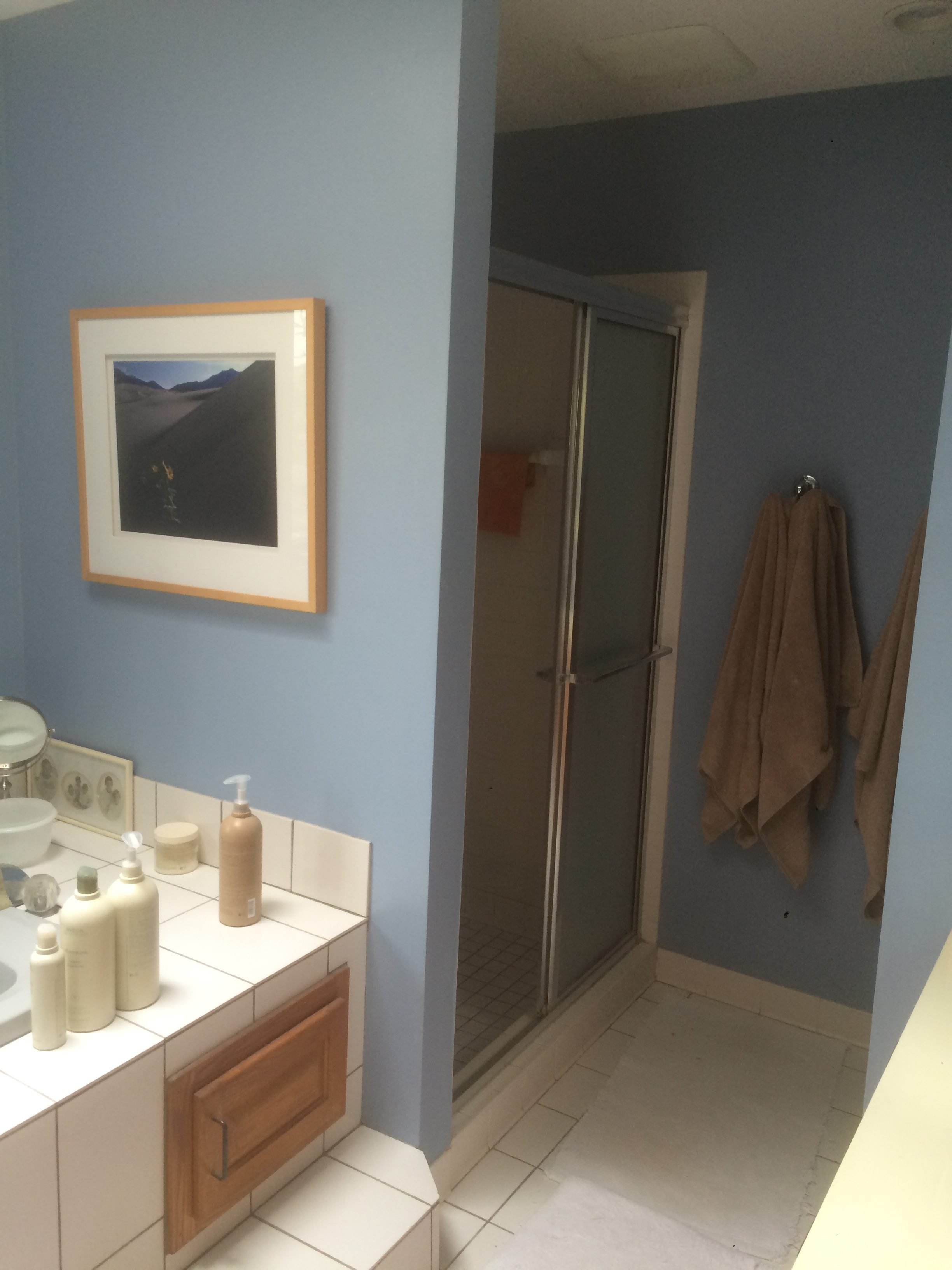 The shower area felt far too dark and small, separated from the rest of the space by a solid wall.